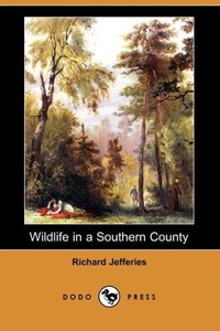 Wildlife in a Southern County (Dodo Press)
