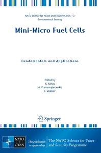 Mini-Micro Fuel Cells