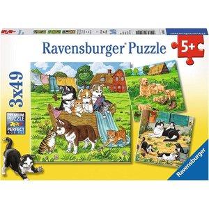 Ravensburger 08002 - Süße Katzen und Hunde, Puzzle, 3 X 49 Teile