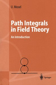 Path Integrals in Field Theory