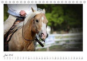 Westernpferde - Faszination und Leidenschaft (Tischkalender 2016