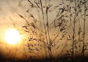 Sonnenaufgang im Teufelsmoor (Tischaufsteller DIN A5 quer)