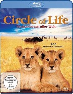 Circle Of Life-Tierbabies aus aller Welt
