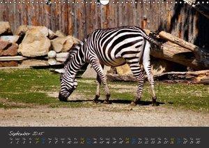 Beautiful Wildlife / UK-Version (Wall Calendar 2015 DIN A3 Land