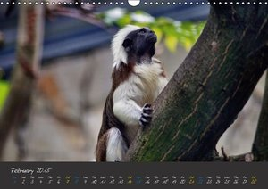 Beautiful Wildlife / UK-Version (Wall Calendar 2015 DIN A3 Land