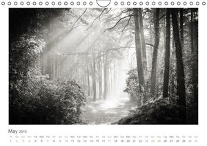 Into the Forest (Wall Calendar 2015 DIN A4 Landscape)