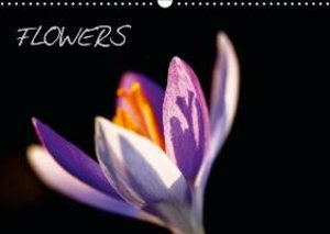 Jager, T: Flowers / UK-Version
