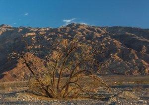 Faszination Death Valley (Tischaufsteller DIN A5 quer)