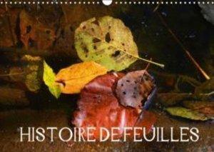HISTOIRE DE FEUILLES (Calendrier mural 2015 DIN A3 horizontal)