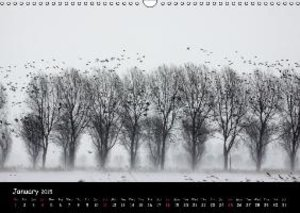 Cry of the Wild Goose / UK-Version (Wall Calendar 2015 DIN A3 La
