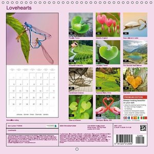 Lovehearts (Wall Calendar 2015 300 × 300 mm Square)