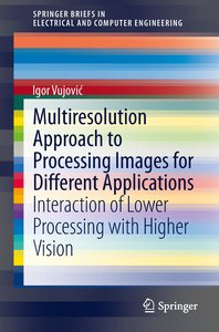 Multiresolution Approach to Processing Images for Different Appl