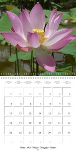 Quiet Moments in Laos (Wall Calendar 2015 300 × 300 mm Square)