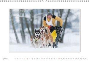 Emotional Moments: The Art of Huskys. UK-Version (Wall Calendar