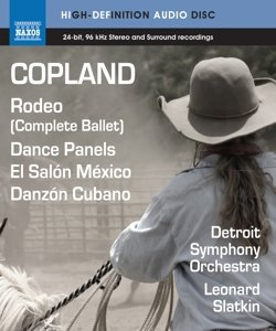 Rodeo/Dance Panels