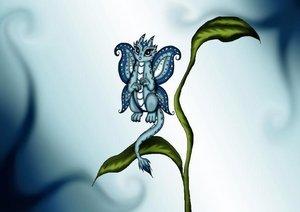 Ich liebe Drachen (Posterbuch DIN A2 quer)