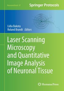 Laser Scanning Microscopy and Quantitative Image Analysis of Neu