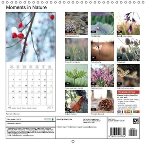 Moments in Nature (Wall Calendar 2015 300 × 300 mm Square)
