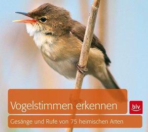 Vogelstimmen erkennen