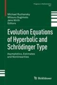 Evolution Equations of Hyperbolic and Schrödinger Type