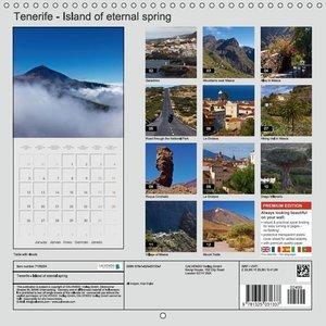 Tenerife - Island of eternal spring (Wall Calendar 2015 300 × 30