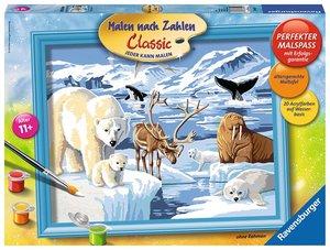 Ravensburger 284221 - Tiere der Arktis - Malen nach Zahlen, 30 x
