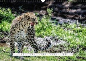 African savannah (Wall Calendar 2015 DIN A3 Landscape)