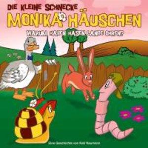 Die kleine Schnecke Monika Häuschen 23: Warum haben Hasen lange