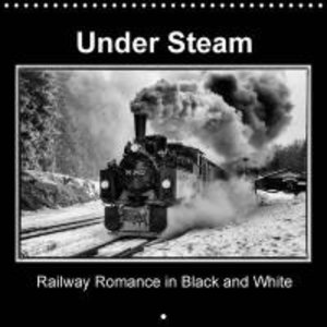 Under Steam Railway Romance in Black and White (Wall Calendar 20