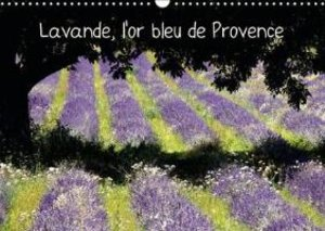 Lavande, L'or Bleu De Provence