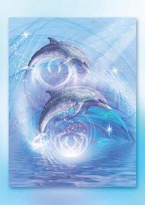 Delfine (Posterbuch DIN A3 hoch)