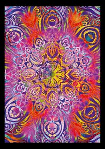 A Shamans Vision Starseed - Mandala Art (Poster Book DIN A2 Port