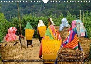 A journey through Sri Lanka (Wall Calendar 2015 DIN A4 Landscape