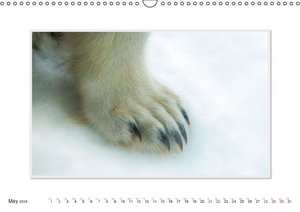 Emotional Moment:The Polarbear. UK-Version (Wall Calendar 2016 D
