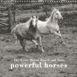 The Crazy Horse Ranch and their powerful horses (Wall Calendar 2