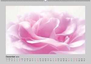 Burlager, C: Flower Impressions / UK-Version