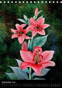 Wilde Iris-, Lilien- und Kornblumen-Zeichnungen (Tischkalender 2
