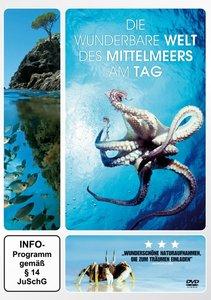 Die Wunderbare Welt Des Mittelmeers Am Tag