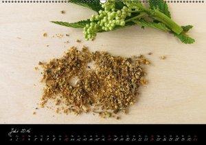 Heilsame Teekräuter (Wandkalender 2016 DIN A2 quer)