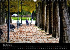 So manyTrees (Wall Calendar 2015 DIN A3 Landscape)