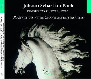 Cantates BWV 12,51,131