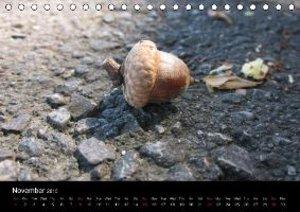 Pure Nature / UK-Version (Table Calendar 2015 DIN A5 Landscape)