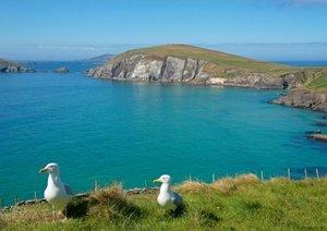 Irlands Westküste (Posterbuch DIN A4 quer)