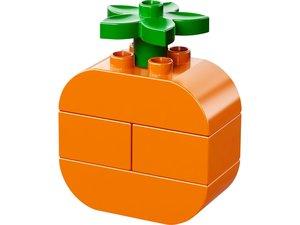 LEGO® Duplo 10566 - Lustiges Picknick