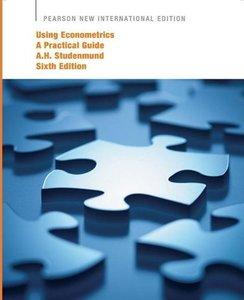 Using Econometrics