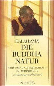 Die Buddha-Natur
