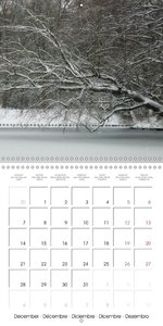 Portraits of Trees 2015 (Wall Calendar 2015 300 &times 300 mm Sq