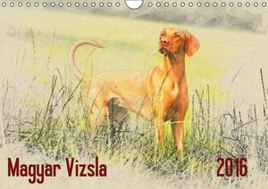 Magyar Vizsla 2016 / UK-Version (Wall Calendar 2016 DIN A4 Lands