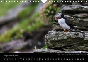 Ireland´s West / UK-Version (Wall Calendar 2015 DIN A4 Landscape