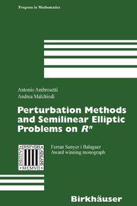 Perturbation Methods and Semilinear Elliptic Problems on R^N